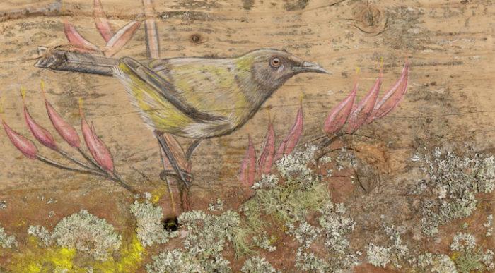 disegni-uccelli-legno-riciclato-john-jepson-8