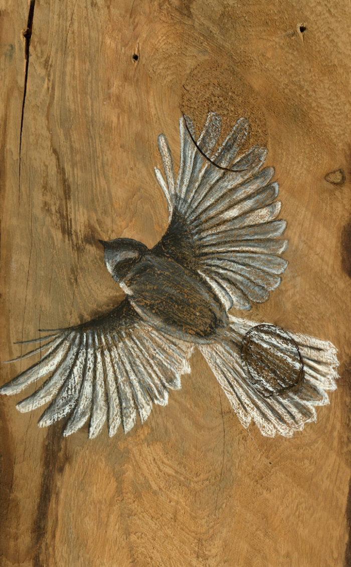 disegni-uccelli-legno-riciclato-john-jepson-9