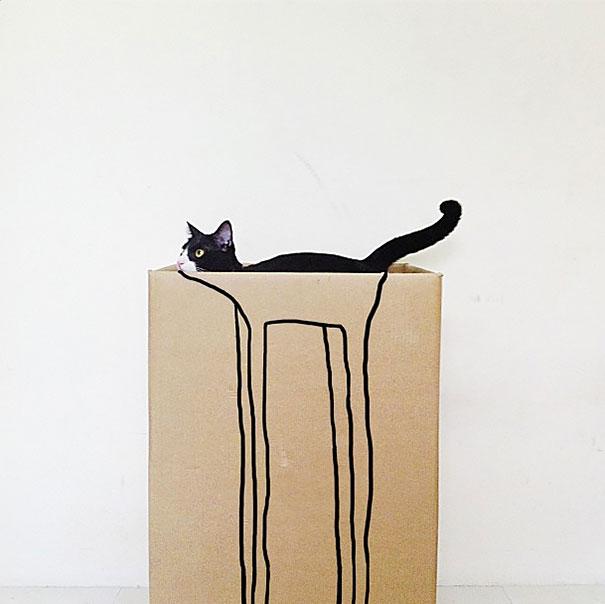 foto-gatti-divertenti-tempismo-perfetto-37