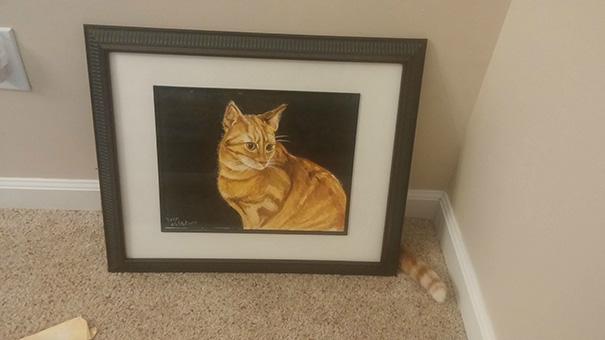 foto-gatti-divertenti-tempismo-perfetto-40