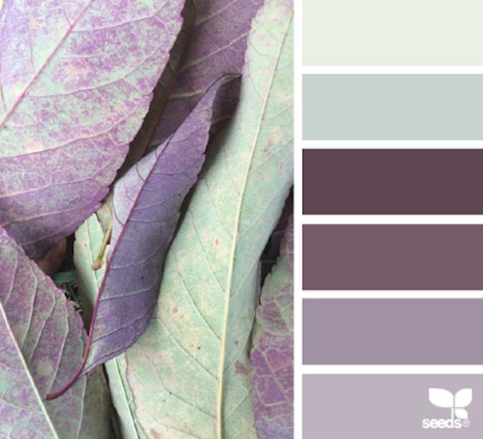 foto-natura-tavolozze-colori-design-seeds-colaluca-01