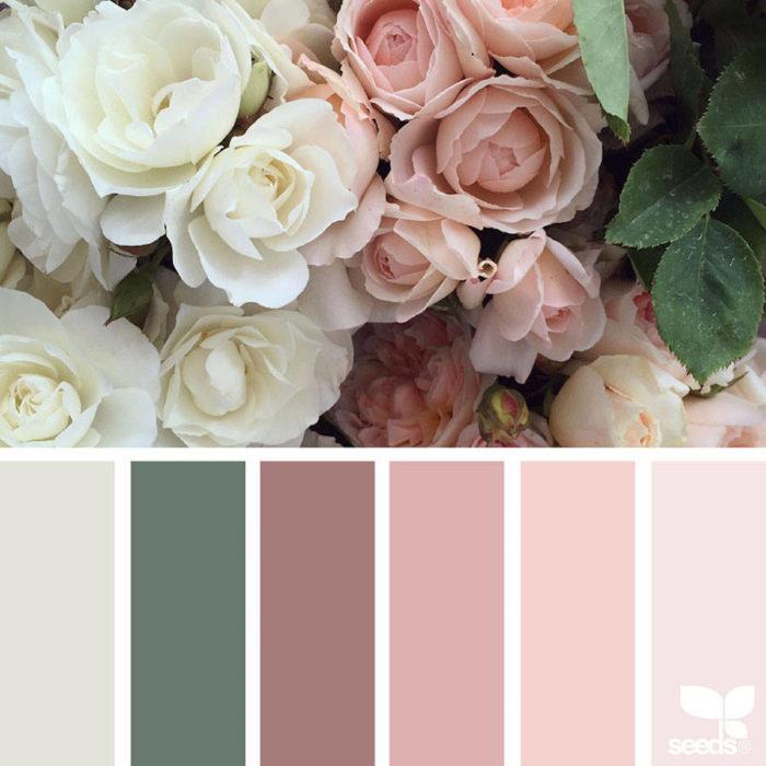 foto-natura-tavolozze-colori-design-seeds-colaluca-03
