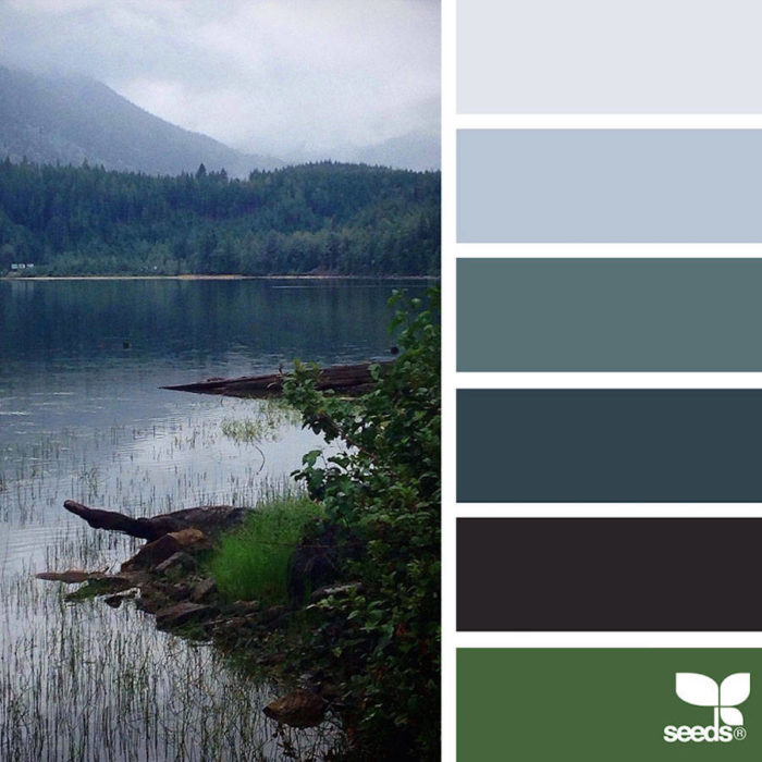 foto-natura-tavolozze-colori-design-seeds-colaluca-04