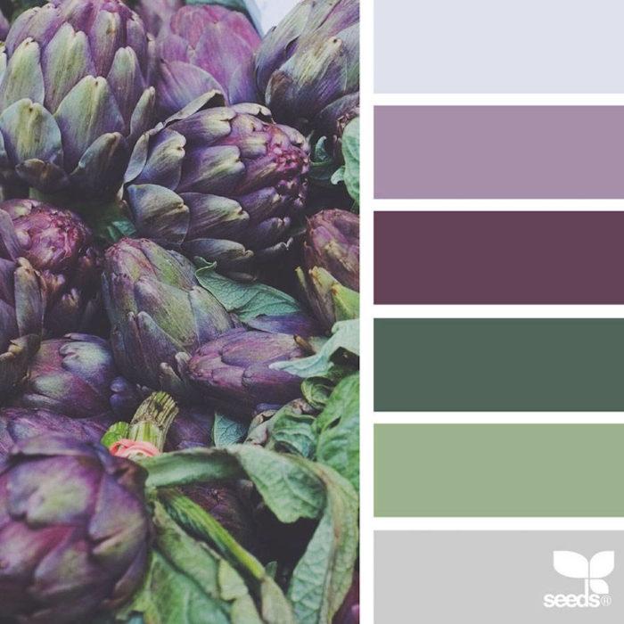 foto-natura-tavolozze-colori-design-seeds-colaluca-06