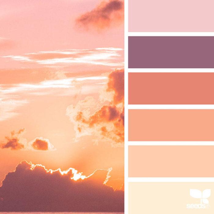 foto-natura-tavolozze-colori-design-seeds-colaluca-07