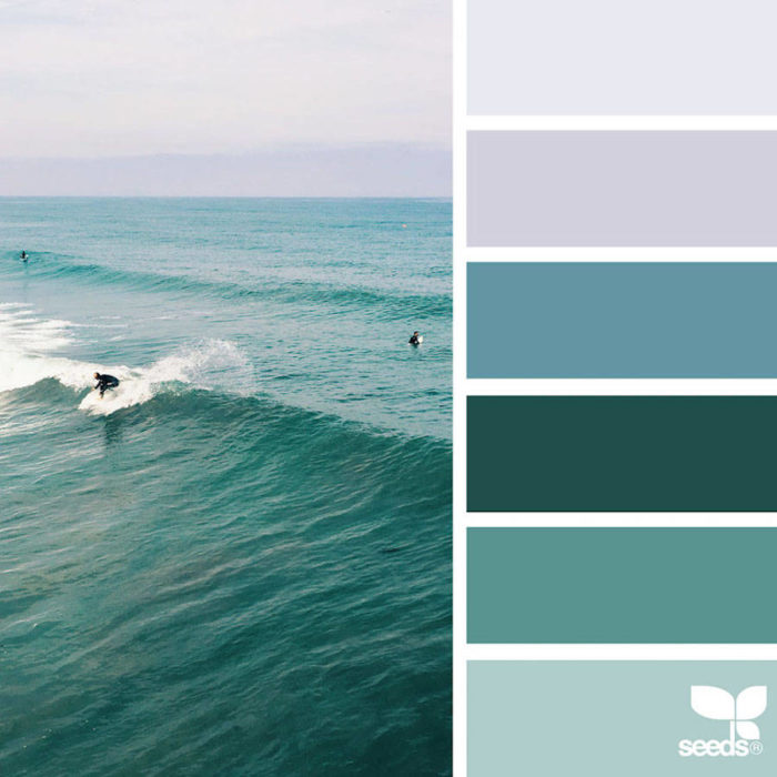foto-natura-tavolozze-colori-design-seeds-colaluca-10