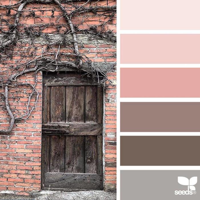 foto-natura-tavolozze-colori-design-seeds-colaluca-12