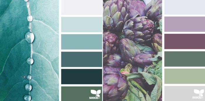 foto-natura-tavolozze-colori-design-seeds-colaluca-14