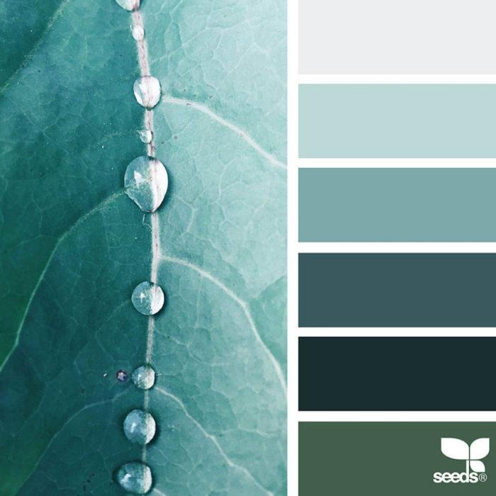 foto-natura-tavolozze-colori-design-seeds-colaluca-17