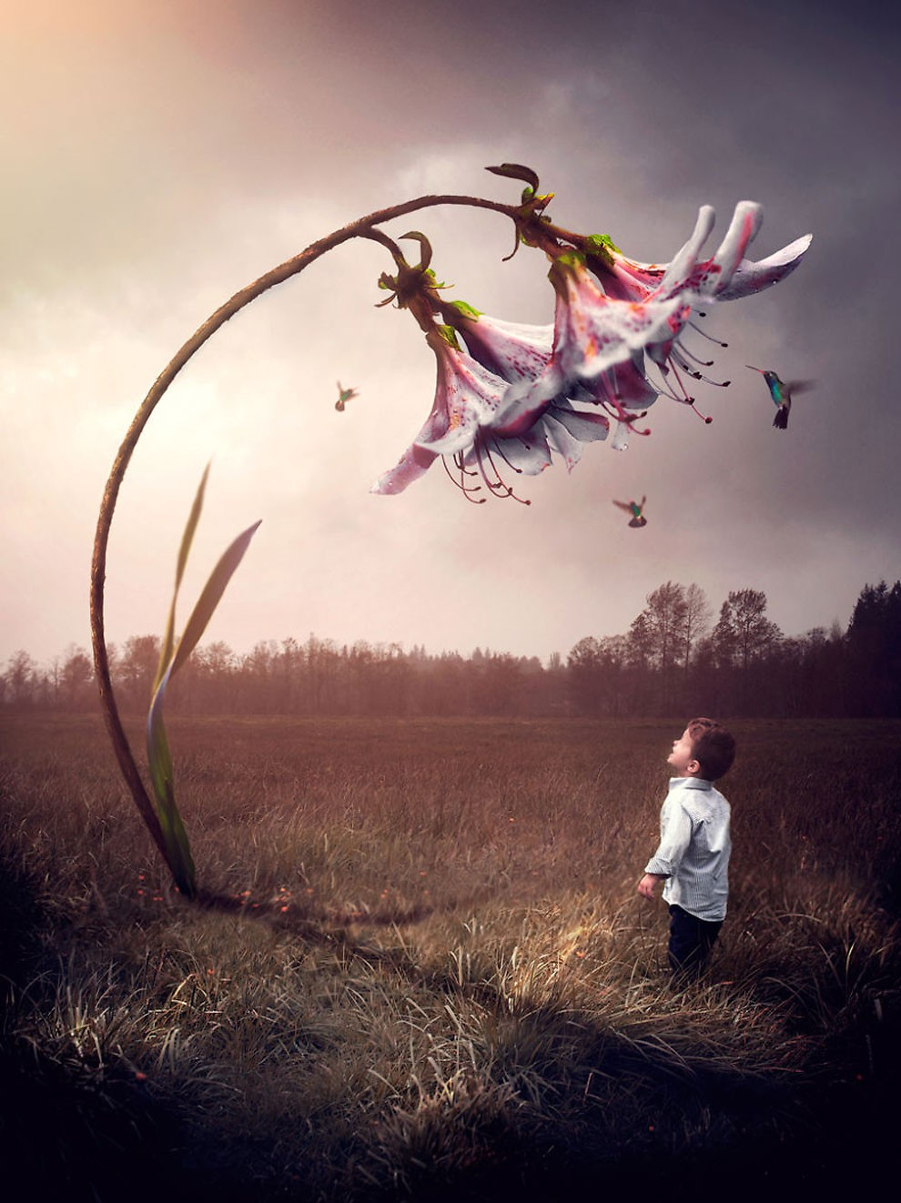 fotografia-bambini-animali-surreali-fantasy-gabriel-tomoiaga-06