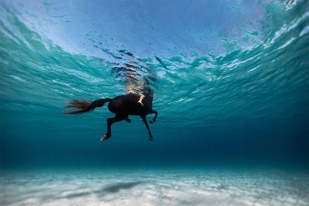 fotografia-subacquea-enric-adrian-gener-27mm-04