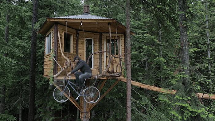 Un nuovo libro raccoglie le migliori 200 casette in legno - Casette per uccellini da costruire ...