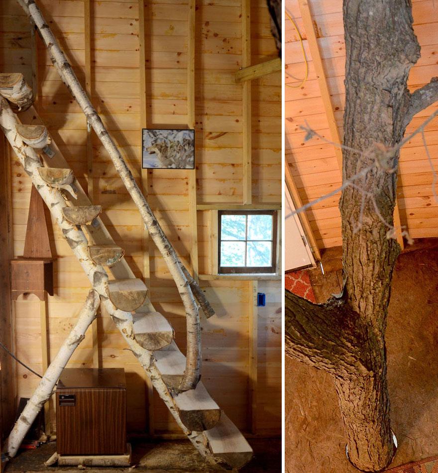 Un nonno costruisce per i suoi nipoti un 39 epica casa sull for Trova i miei piani di casa