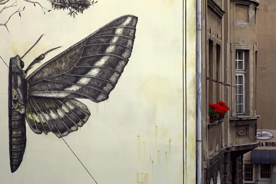 street-art-murale-sentir-alexis-diaz-lodz-polonia-07