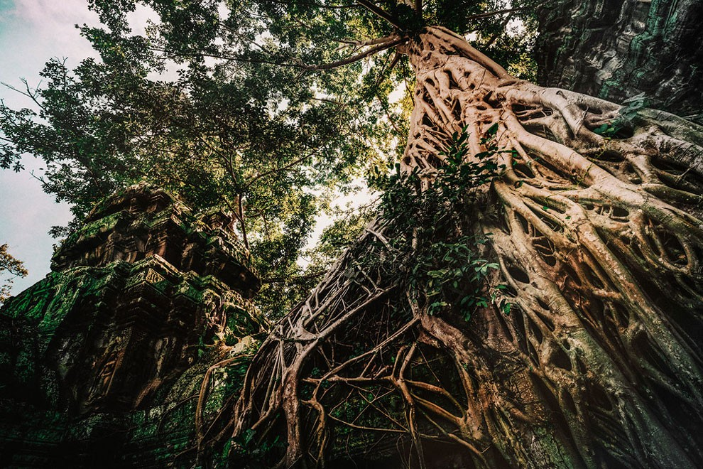 templi-cambogia-fotografia-alex-teuscher-16