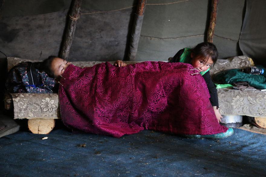 tsaatan-popolo-nomadi-mongolia-renne-03