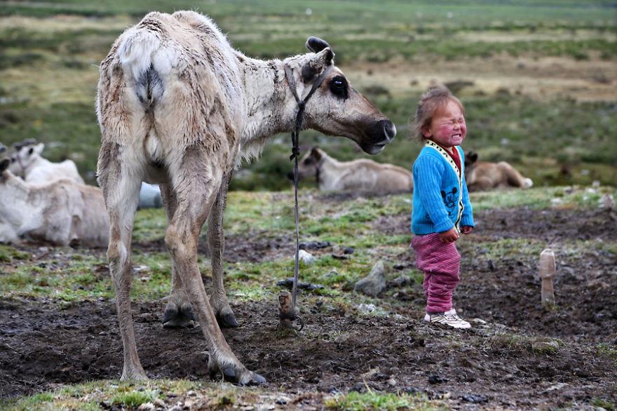 tsaatan-popolo-nomadi-mongolia-renne-08