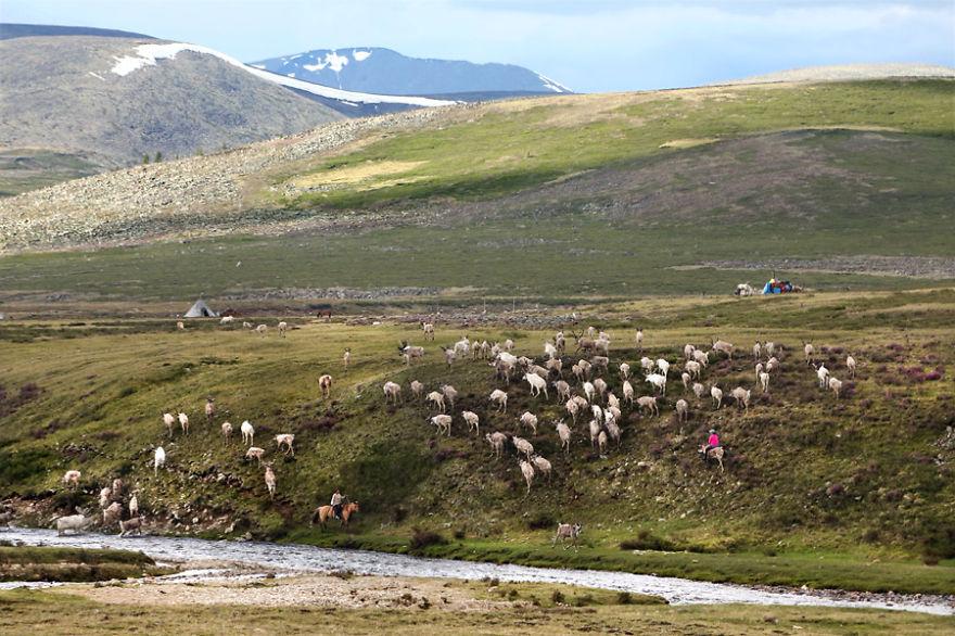 tsaatan-popolo-nomadi-mongolia-renne-09