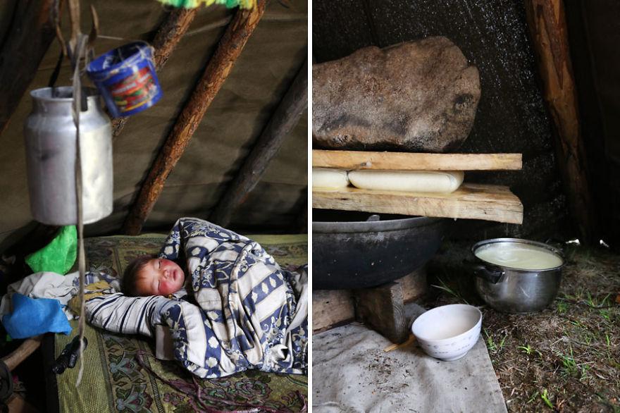 tsaatan-popolo-nomadi-mongolia-renne-14