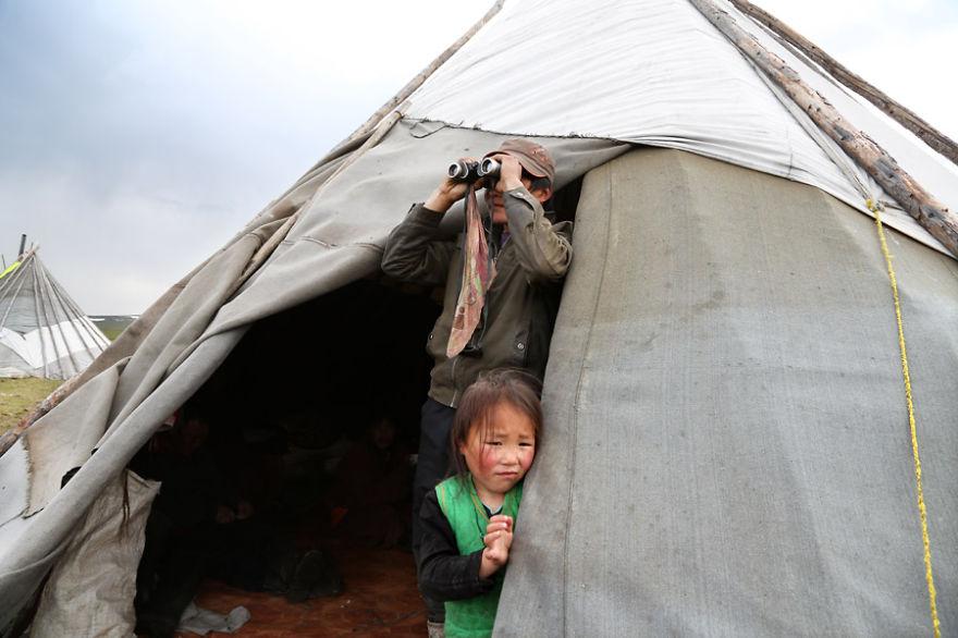 tsaatan-popolo-nomadi-mongolia-renne-20