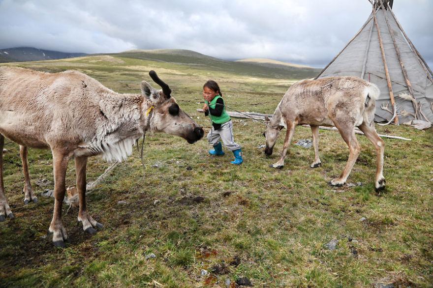 tsaatan-popolo-nomadi-mongolia-renne-23