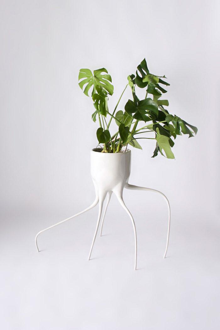 vaso-piante-design-ceramica-radici-tim-van-de-weerd-1