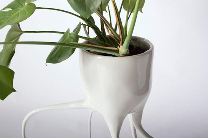 Vasi per piante con radici di ceramica create dal designer - Vasi piante design ...