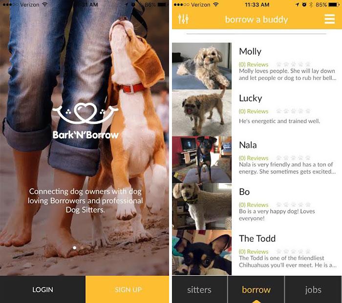 app-prestare-affittare-cane-barknborrow-05