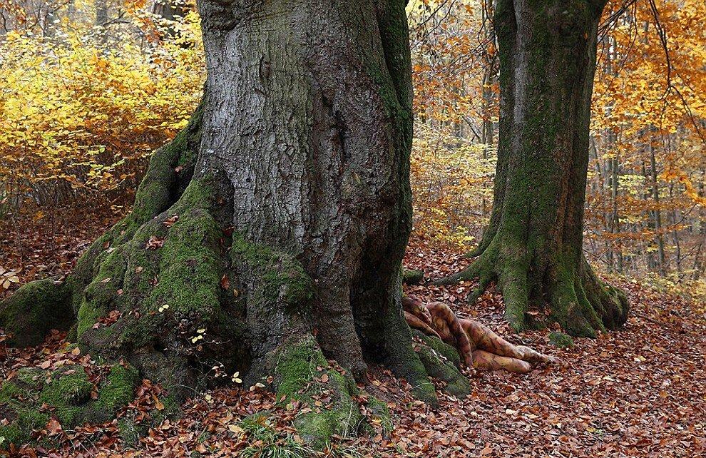 body-art-corpo-nudo-mimetizzato-natura-jorg-dusterwald-4