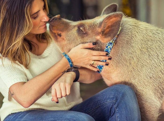 braccialetto-collare-accoppiati-cani-gatti-amicizia-05