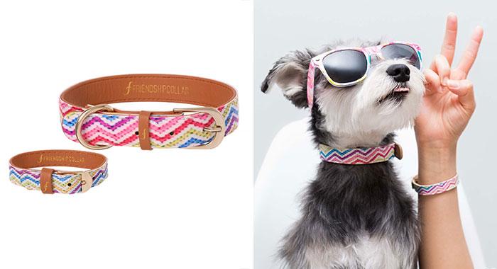 braccialetto-collare-accoppiati-cani-gatti-amicizia-09