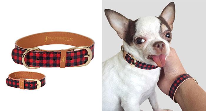 braccialetto-collare-accoppiati-cani-gatti-amicizia-10