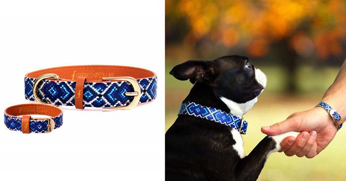 braccialetto-collare-accoppiati-cani-gatti-amicizia-13