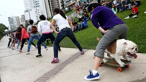 cane-skateboard-otto-record-5