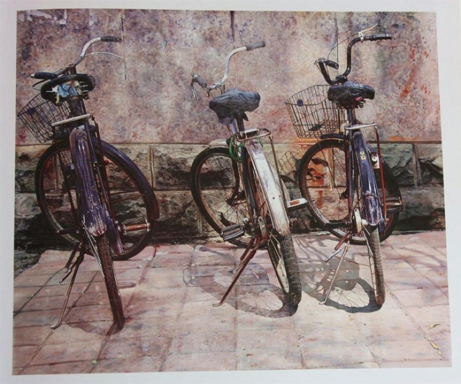 dipinti-iperrealisti-biciclette-pan-xun-2