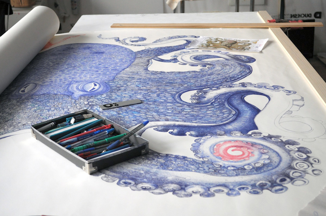 disegno-penna-biro-polpo-gigante-ray-cicin-3
