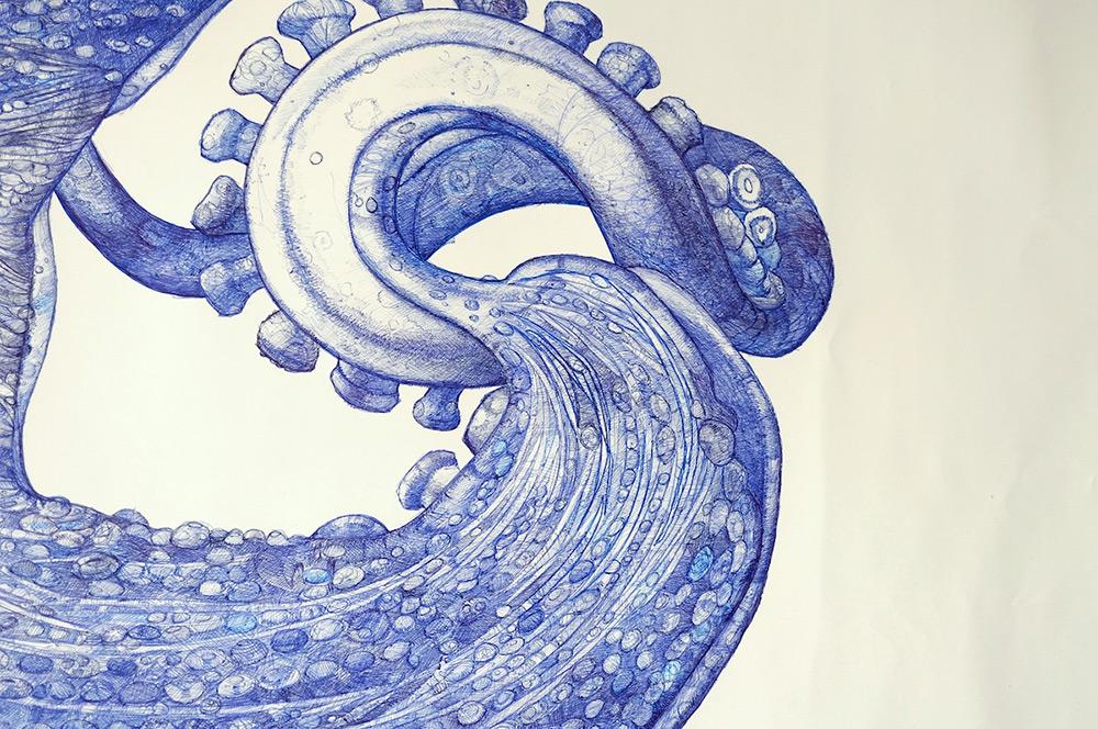 disegno-penna-biro-polpo-gigante-ray-cicin-4