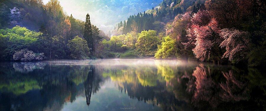 Magnifici paesaggi riflessi della Corea del Sud nella ...