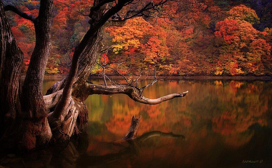 fotografia-paesaggi-riflessi-corea-sud-jaewoon-u-10