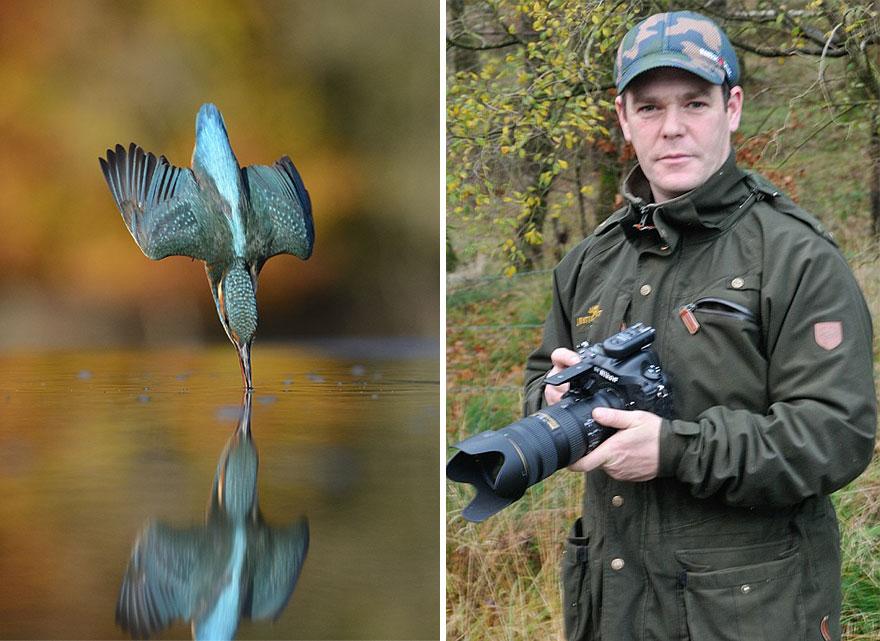 fotografia-perfetta-martin-pescatore-picchiata-acqua-immersione-alan-mcfadyen-8