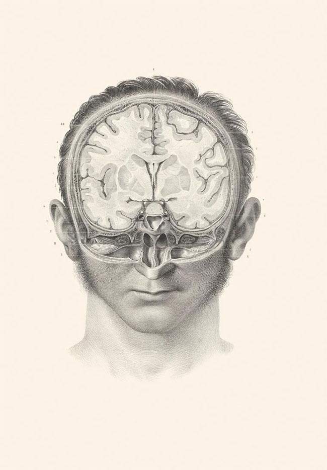 illustrazioni-vintage-800-medicina-chirurgia-richard-barnett-34