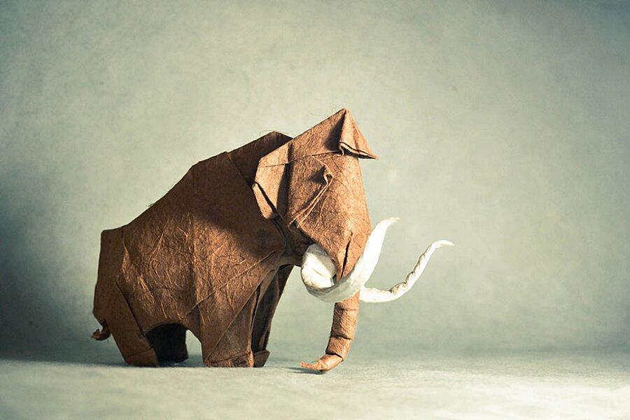 origami-arte-carta-gonzalo-garcia-calvo-16