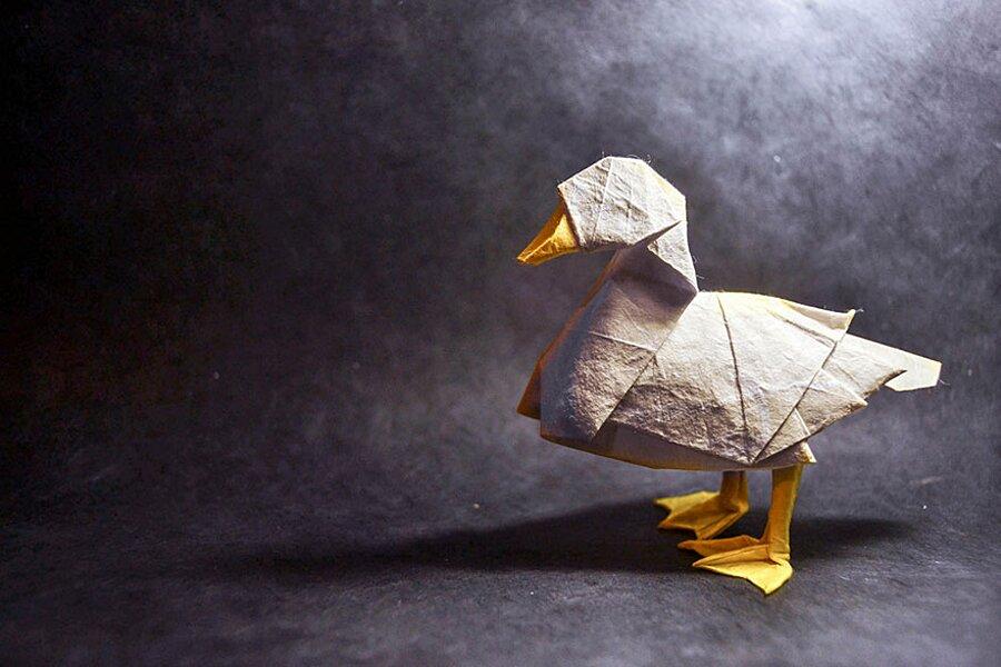 origami-arte-carta-gonzalo-garcia-calvo-18