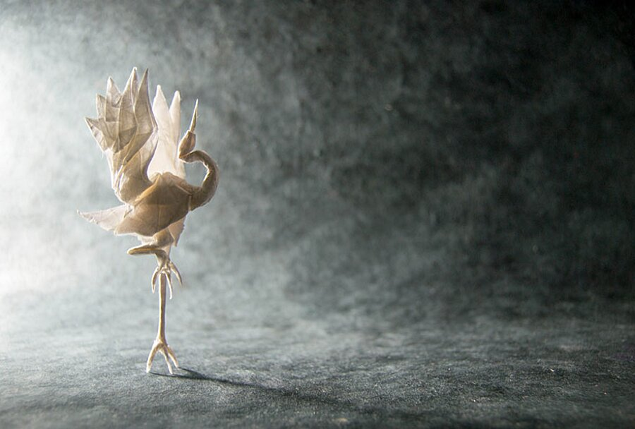 origami-arte-carta-gonzalo-garcia-calvo-28