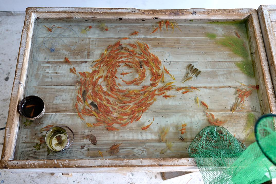 pesci-rossi-dipinti-strati-resina-iperrealismo-riusuke-fukahori-01