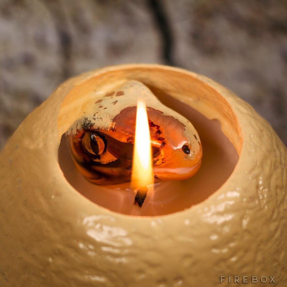 candela-uovo-dinosauro-hatching-dinosaur-candle-3