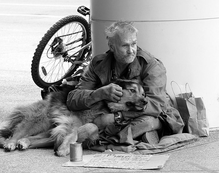 cani-senza-tetto-migliori-amici-08