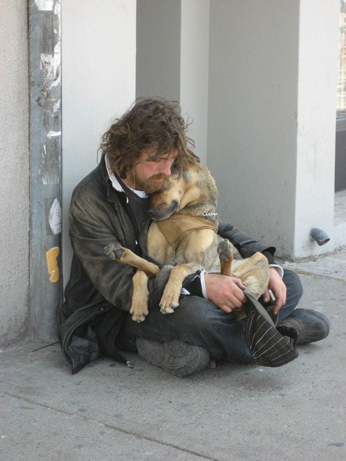 cani-senza-tetto-migliori-amici-26