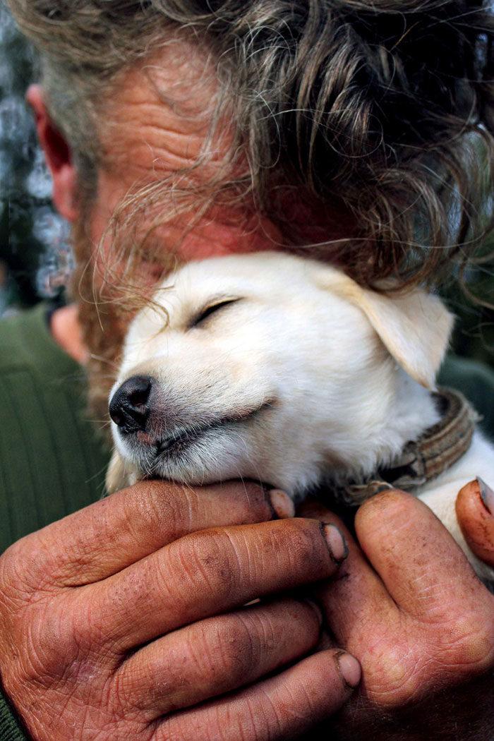 cani-senza-tetto-migliori-amici-27