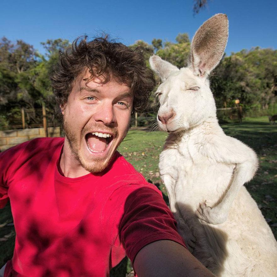 divertenti-selfie-con-animali-allan-dixon-02